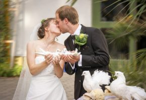 婚活 挫折